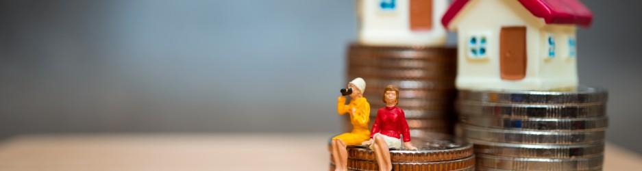 المرأة والعمود الاقتصادي الجديد